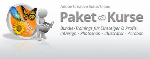 Adobe® CC/CS6 Grundlagen-Paket-Training (Creative Suite Basisprogramme)